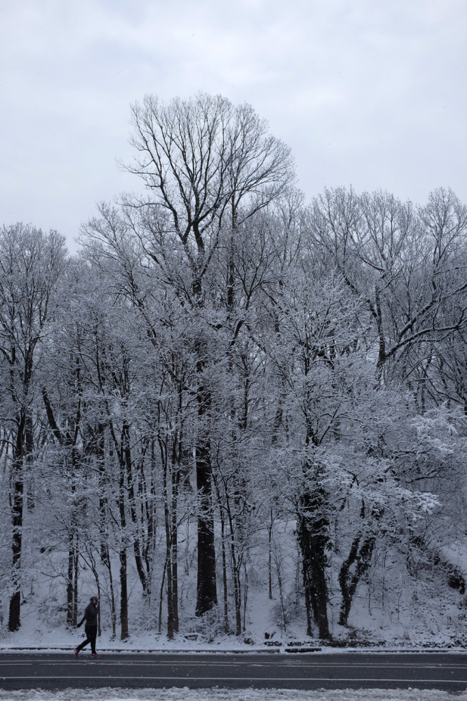 Prospect Park in snow, 21 March 2015