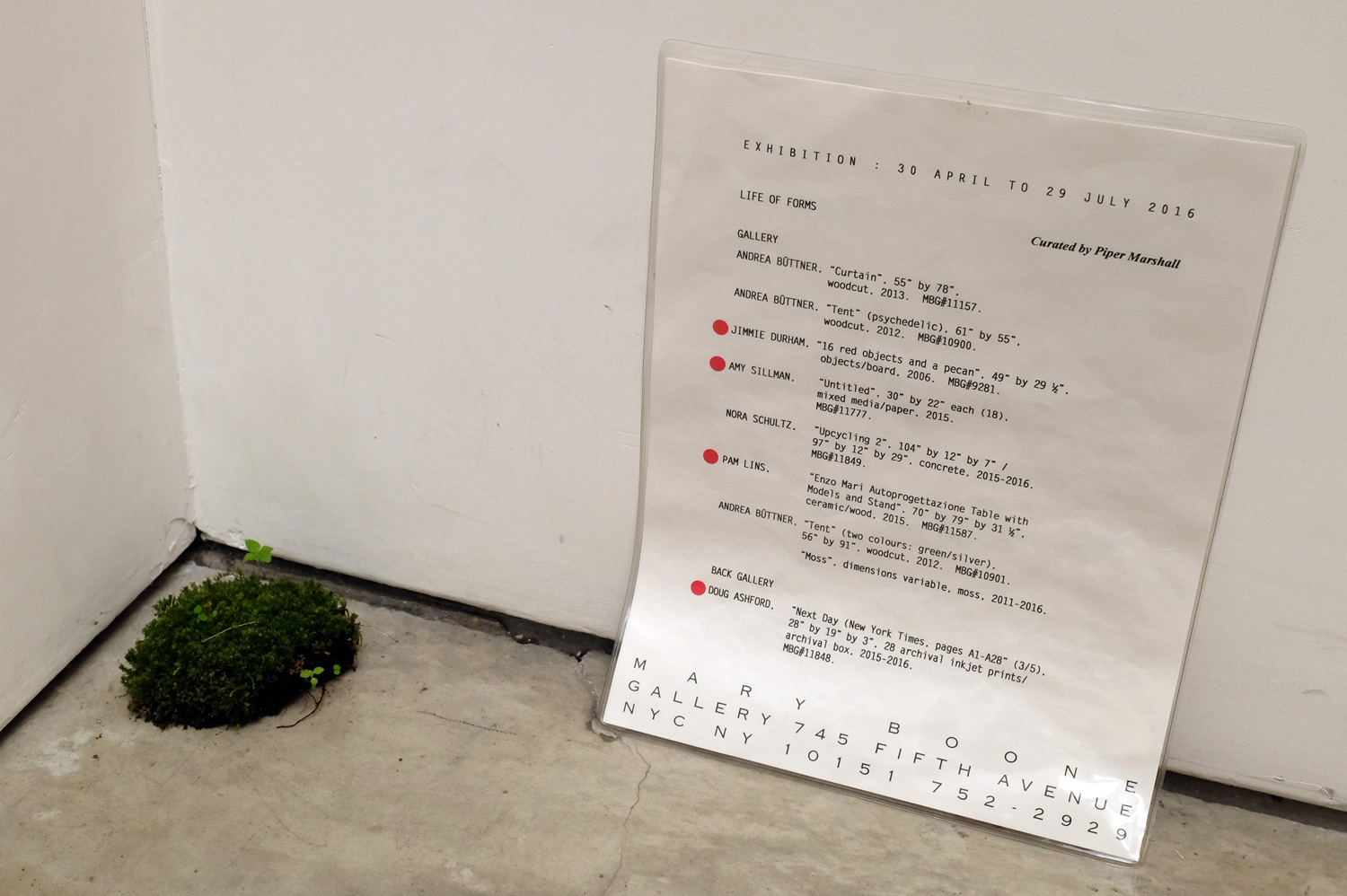 Moss dimensions variable, Mary Boone Gallery, 15 July 2016