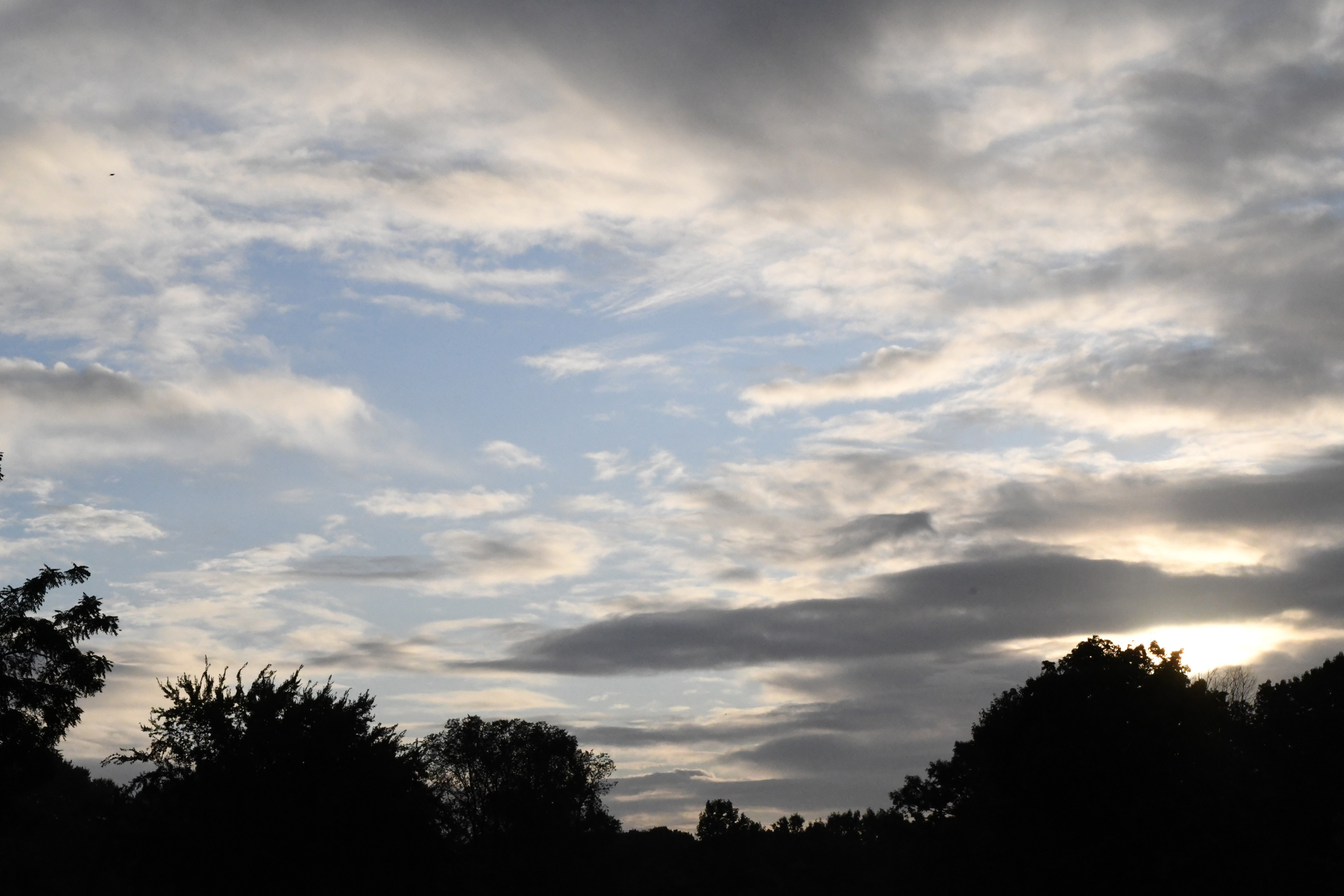 Morning sky, Prospect Park